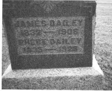 DAILEY, PHEBE - Meigs County, Ohio   PHEBE DAILEY - Ohio Gravestone Photos