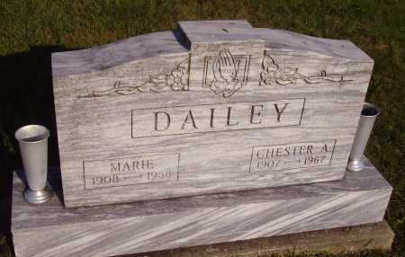 DAILEY, CHESTER A. - Meigs County, Ohio | CHESTER A. DAILEY - Ohio Gravestone Photos