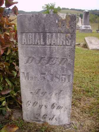 DAINS, ABIAL[SIC] - Meigs County, Ohio | ABIAL[SIC] DAINS - Ohio Gravestone Photos
