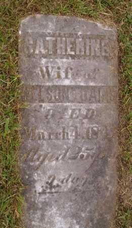 DAINS, CATHERINE - Meigs County, Ohio | CATHERINE DAINS - Ohio Gravestone Photos