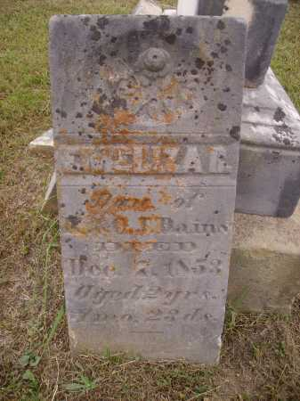 DAINS, EMELIZA R. - Meigs County, Ohio | EMELIZA R. DAINS - Ohio Gravestone Photos