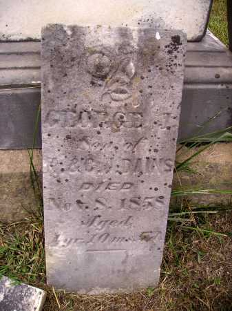 DAINS, GEORGE J. - Meigs County, Ohio   GEORGE J. DAINS - Ohio Gravestone Photos
