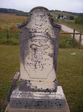 DAINS, KASSON - Meigs County, Ohio   KASSON DAINS - Ohio Gravestone Photos