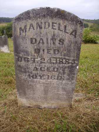 DAINS, MANDELLA - Meigs County, Ohio | MANDELLA DAINS - Ohio Gravestone Photos