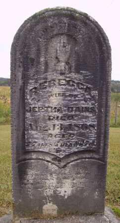 DAINS, REBECCA - Meigs County, Ohio | REBECCA DAINS - Ohio Gravestone Photos