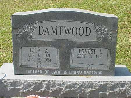 DAMEWOOD, ERNEST L. - Meigs County, Ohio | ERNEST L. DAMEWOOD - Ohio Gravestone Photos