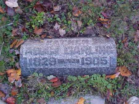 DARLING, ADAM - Meigs County, Ohio | ADAM DARLING - Ohio Gravestone Photos