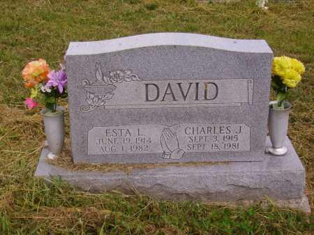 DAVID, ESTA L. - Meigs County, Ohio | ESTA L. DAVID - Ohio Gravestone Photos
