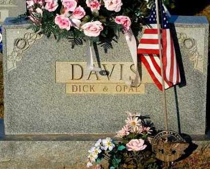DAVIS, OPAL - Meigs County, Ohio | OPAL DAVIS - Ohio Gravestone Photos