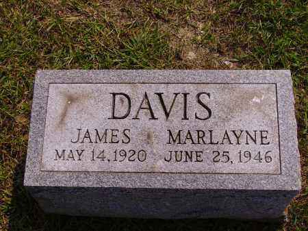 DAVIS, MARLAYNE - Meigs County, Ohio | MARLAYNE DAVIS - Ohio Gravestone Photos