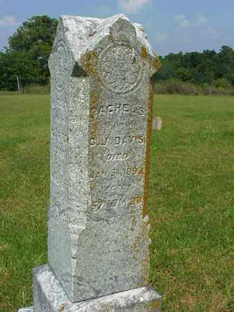 SHENEFIELD PIPER, RACHEL SAMANTHA - Meigs County, Ohio | RACHEL SAMANTHA SHENEFIELD PIPER - Ohio Gravestone Photos