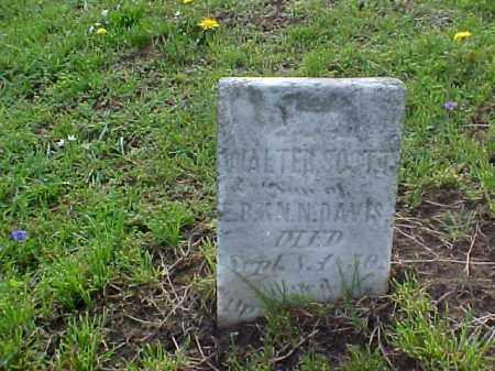 DAVIS, WALTER SCOTT - Meigs County, Ohio   WALTER SCOTT DAVIS - Ohio Gravestone Photos