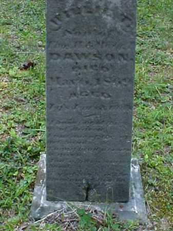 DAWSON, WILLIE D. - Meigs County, Ohio | WILLIE D. DAWSON - Ohio Gravestone Photos