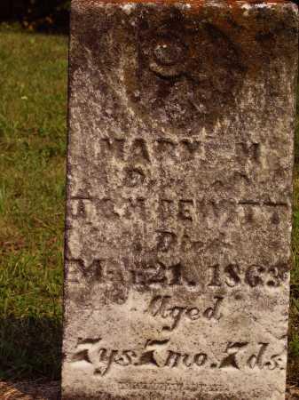 DEWITT, MARY M. - Meigs County, Ohio   MARY M. DEWITT - Ohio Gravestone Photos