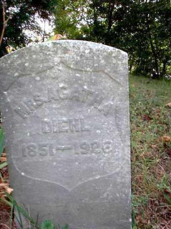 DIEHL, AGATHA MRS. - Meigs County, Ohio | AGATHA MRS. DIEHL - Ohio Gravestone Photos