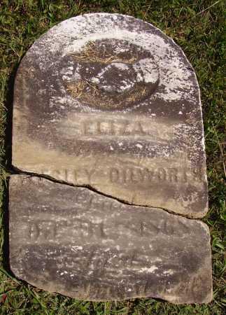 DILWORTH, ELIZA - Meigs County, Ohio   ELIZA DILWORTH - Ohio Gravestone Photos