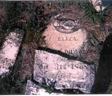 ROMINE DILWORTH, ELIZA - Meigs County, Ohio | ELIZA ROMINE DILWORTH - Ohio Gravestone Photos