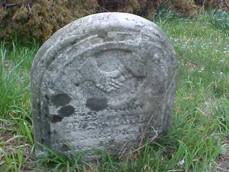 DISCHINGER, CATHARINE MAURIER - Meigs County, Ohio | CATHARINE MAURIER DISCHINGER - Ohio Gravestone Photos