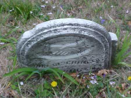 DISCHINGER, JOHN - Meigs County, Ohio | JOHN DISCHINGER - Ohio Gravestone Photos