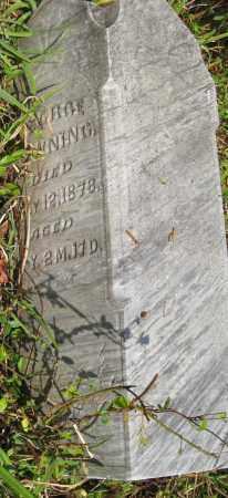 DOWNING, GEORGE - Meigs County, Ohio | GEORGE DOWNING - Ohio Gravestone Photos