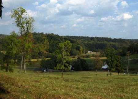 DOWNING, HARRIET - Meigs County, Ohio | HARRIET DOWNING - Ohio Gravestone Photos