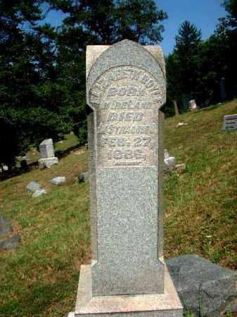DOYLE, ELIZABETH - Meigs County, Ohio | ELIZABETH DOYLE - Ohio Gravestone Photos