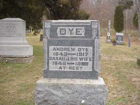DYE, SARAH J. - Meigs County, Ohio | SARAH J. DYE - Ohio Gravestone Photos