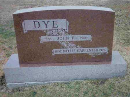 CARPENTER DYE, NELLIE - Meigs County, Ohio | NELLIE CARPENTER DYE - Ohio Gravestone Photos
