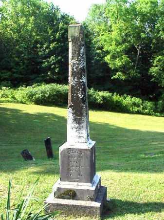 DYE, MARTIN JR. - Meigs County, Ohio | MARTIN JR. DYE - Ohio Gravestone Photos
