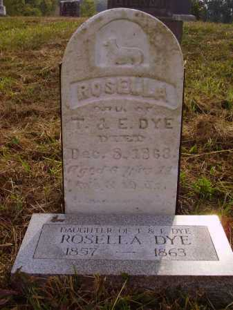 DYE, ROSELLA - OVERALL VIEW - Meigs County, Ohio   ROSELLA - OVERALL VIEW DYE - Ohio Gravestone Photos