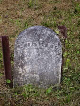 EDMUNDSON, CHARLIE - Meigs County, Ohio | CHARLIE EDMUNDSON - Ohio Gravestone Photos