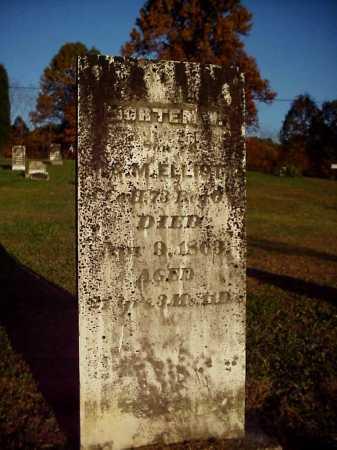 ELLIOTT, MORTEN W. - Meigs County, Ohio | MORTEN W. ELLIOTT - Ohio Gravestone Photos