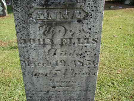 ELLIS, ANNA - Meigs County, Ohio   ANNA ELLIS - Ohio Gravestone Photos