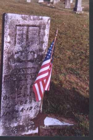 ENTSMINGER, DAVID - Meigs County, Ohio | DAVID ENTSMINGER - Ohio Gravestone Photos