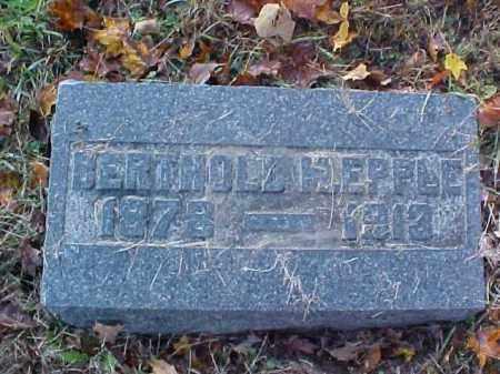 EPPLE, BERTHOLD - Meigs County, Ohio | BERTHOLD EPPLE - Ohio Gravestone Photos