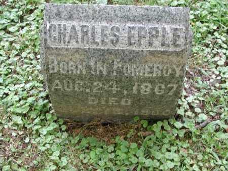 EPPLE, CHARLES - Meigs County, Ohio | CHARLES EPPLE - Ohio Gravestone Photos
