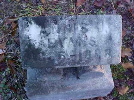 EVANS, ANNIS J. - Meigs County, Ohio | ANNIS J. EVANS - Ohio Gravestone Photos