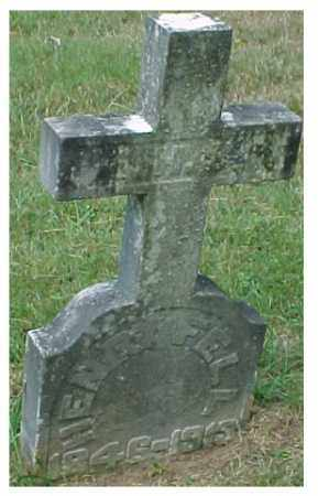 FELL, HENRY - Meigs County, Ohio | HENRY FELL - Ohio Gravestone Photos