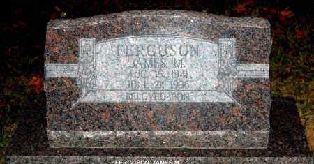 FERGUSON, JAMES M. - Meigs County, Ohio | JAMES M. FERGUSON - Ohio Gravestone Photos