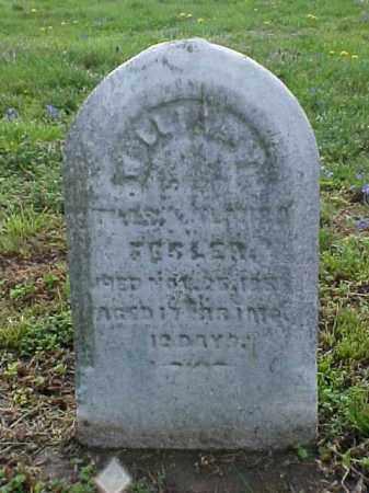 FESLER, WILLIAM - Meigs County, Ohio   WILLIAM FESLER - Ohio Gravestone Photos
