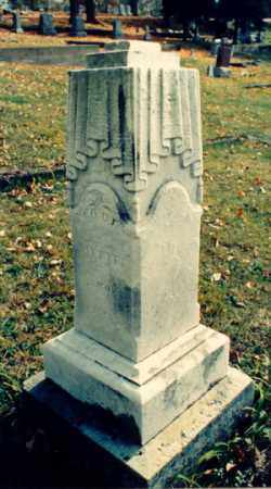 FIFE, A.W. [ABRAHAM WILLIAM] - Meigs County, Ohio | A.W. [ABRAHAM WILLIAM] FIFE - Ohio Gravestone Photos