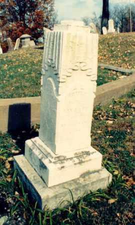 FIFE, EMILY - Meigs County, Ohio | EMILY FIFE - Ohio Gravestone Photos