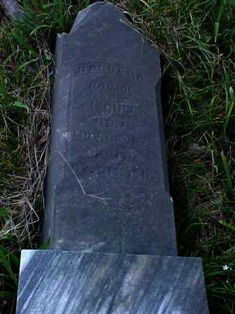 FISCHER, BARBARA - Meigs County, Ohio   BARBARA FISCHER - Ohio Gravestone Photos