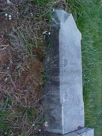 FISCHER, KAROLINE - Meigs County, Ohio | KAROLINE FISCHER - Ohio Gravestone Photos