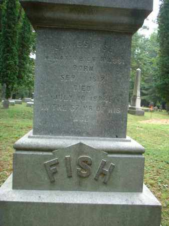 FISH, JAMES S. - Meigs County, Ohio | JAMES S. FISH - Ohio Gravestone Photos