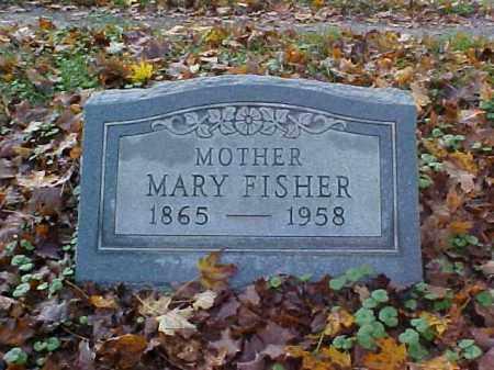 FISHER, MARY - Meigs County, Ohio   MARY FISHER - Ohio Gravestone Photos