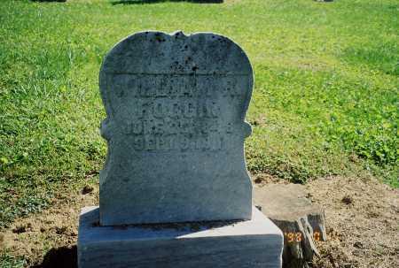 FOGGIN, WILLIAM R. - Meigs County, Ohio | WILLIAM R. FOGGIN - Ohio Gravestone Photos