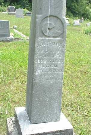 FOOSE, J.W. - Meigs County, Ohio   J.W. FOOSE - Ohio Gravestone Photos
