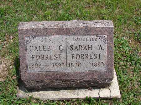FORREST, SARAH A - Meigs County, Ohio | SARAH A FORREST - Ohio Gravestone Photos