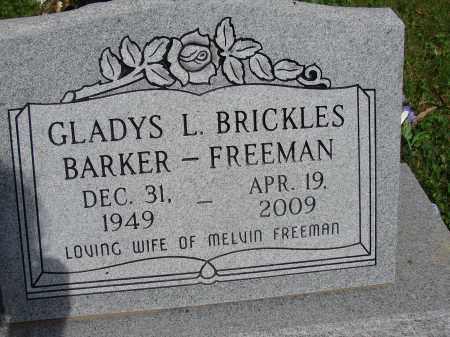 FREEMAN, GLADYS L - Meigs County, Ohio | GLADYS L FREEMAN - Ohio Gravestone Photos